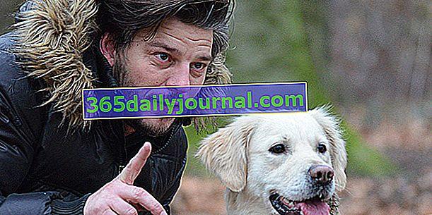 ¿Qué es un adiestrador de perros? ¿Su contribución al perro y a su amo?