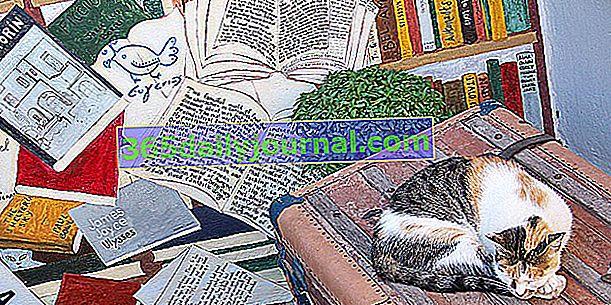 Pregled izraza mačaka, poput davanja mački jezika ...