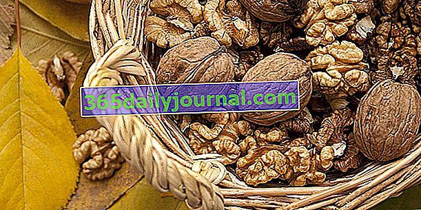 Ceviz: fındık hasadı, konservesi ve kullanımı