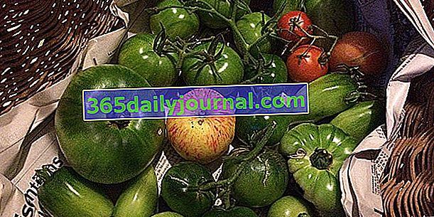 ¿Cómo madurar los tomates verdes de final de temporada?