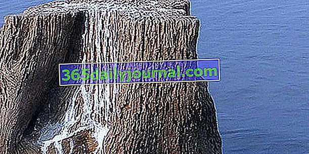 Guano, organiczny nawóz azotowy