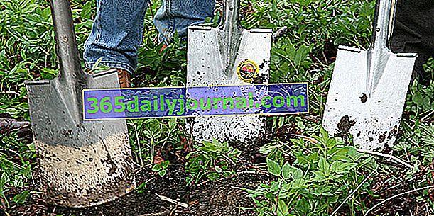 Lopata: alat za okretanje tla u vrtu