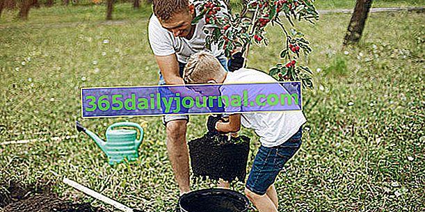 Vrtlarenje s djecom