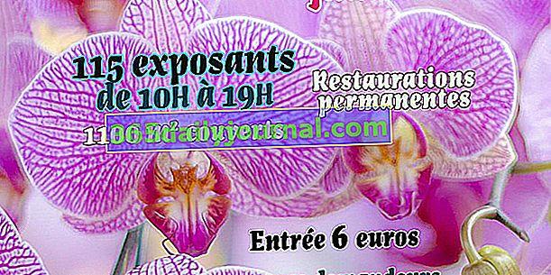 42nd Festiwal Roślin i Ogrodów w Domaine de Péré (79)