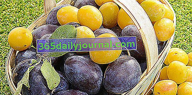 Ciruelas, una amplia variedad de frutas de finales de verano.