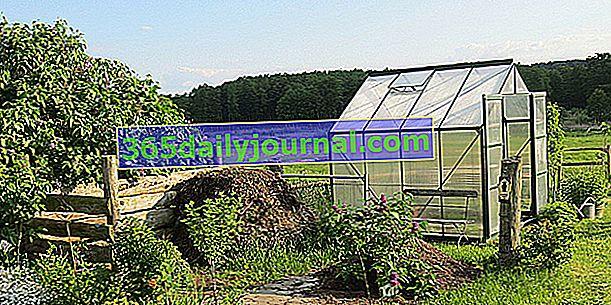 ¿Cómo instalar un invernadero en el jardín?