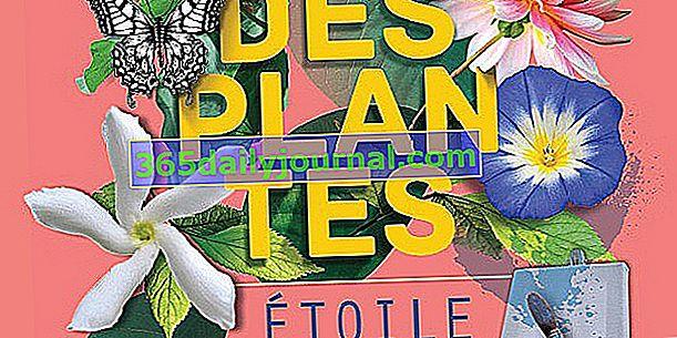 Folie des Plantes 2017 en Nantes (44)