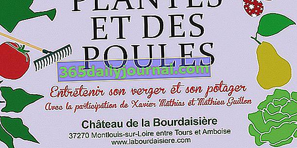 25. festival rostlin a kuřat v La Bourdaisière - Montlouis-sur-Loire (37)