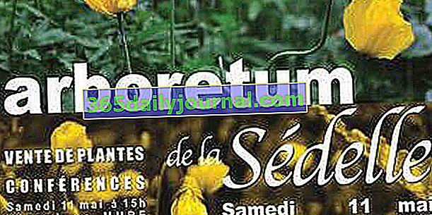 Осінні дні рослин 2019 в дендропарку Седель - Крозант (23)