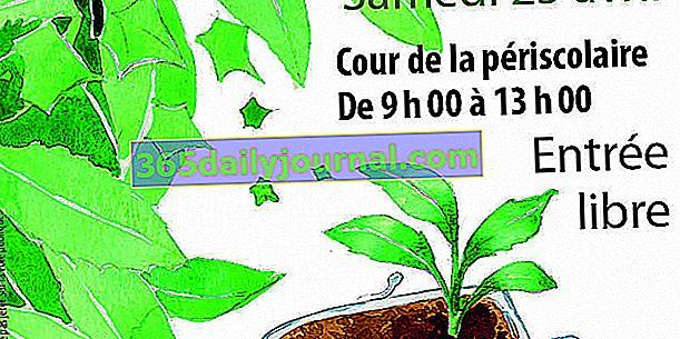 Zamijenite biljke 2020 na paleti (44)