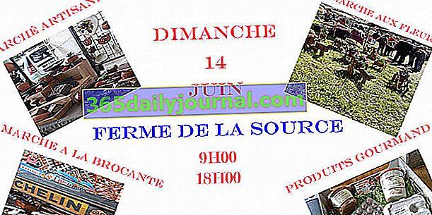 Cvjetna tržnica i obrt u Saint Saire (76)