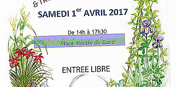 Wymiana roślin w Jumièges 2017 (76)