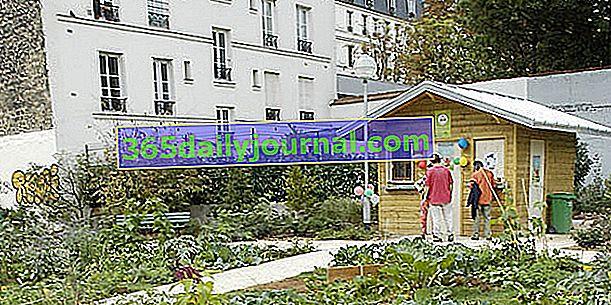 Частные сады в Париже при поддержке ратуши