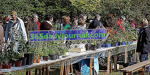 Vide Jardin 2018 в Нанте (44)