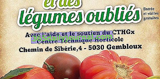 Festival del tomate y las verduras olvidadas 2018 en Gembloux (50)