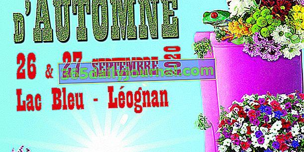 Jardines y sabores de otoño 2020 en Léognan (33)