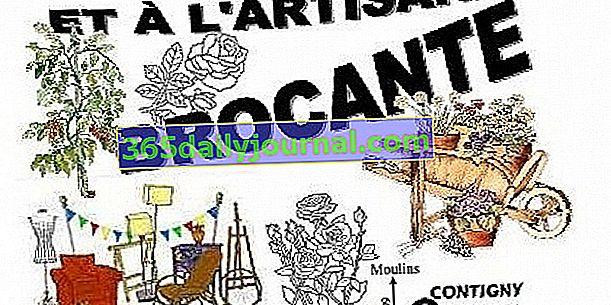 Feria de Plantas y Artesanías - Mercadillo de Contigny (03)