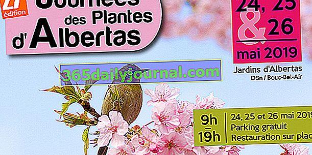 27-то издание на дните на растенията Albertas в Bouc Bel Air (13)