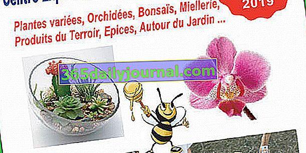 Trzecie targi Expo Sale Plants, Nature & Terroir of Mandelieu la Napoule
