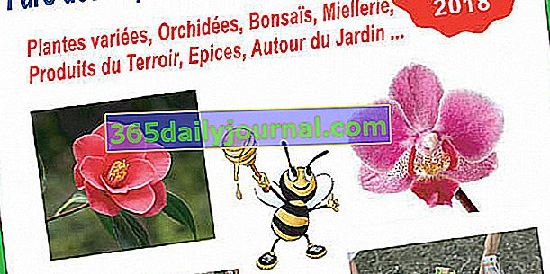 2018 Plants, Nature & Terroir Expo-Sale w Nimes (30)