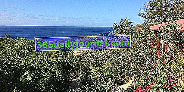 Pohlednice zahrady na Guadeloupe