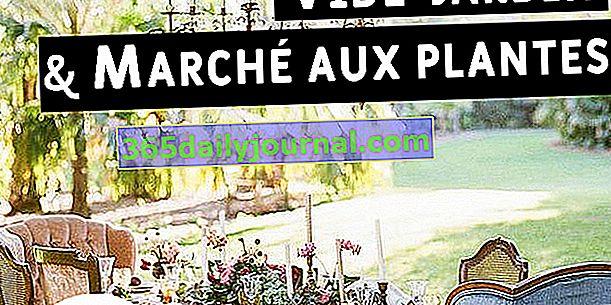 Zahradní a rostlinný trh 2020 v Les Arcs (83)