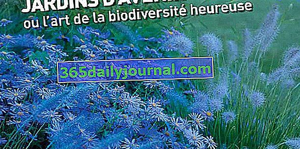 Odhaleno téma 20. mezinárodního zahradního festivalu Chaumont-sur-Loire 2011