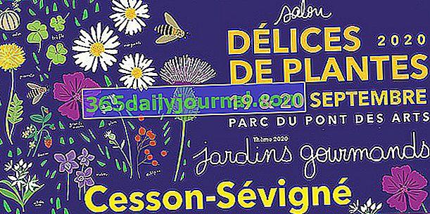 Salon Délices de Plantes iz Cesson-Sévignéa (35)