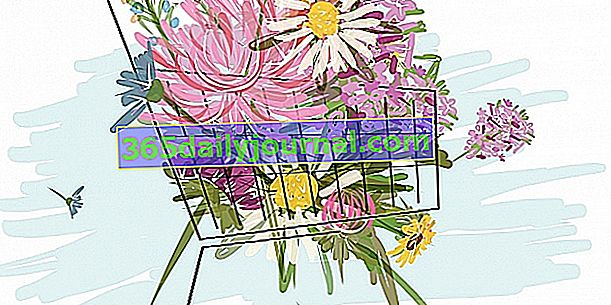 Mercado de las flores de Simorre 2018 (32)