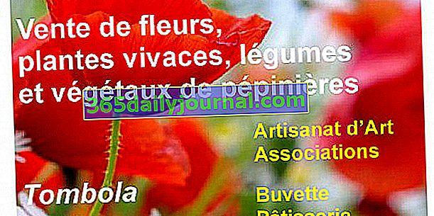 Mercado de primavera 2020 en Saint-Junien (87)