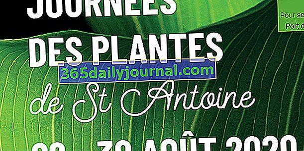 Días de la planta de Saint-Antoine (22)