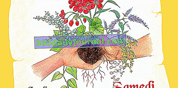 Plant Barter 2019 w Marsylii (13)