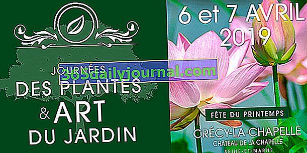 Dnevi rastlinske in vrtne umetnosti 2019 v Crécy-la-Chapelle (77)