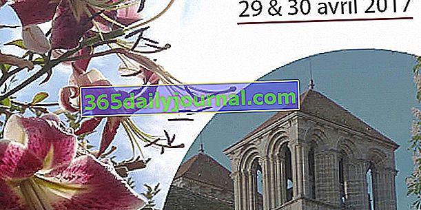 9. veľtrh rastlín Souvigny (03)