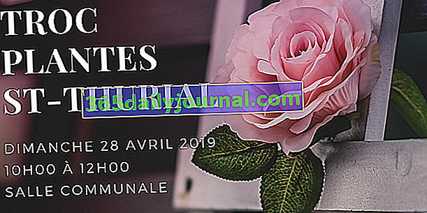 Zamenjajte rastline 2019 v Saint-Thurialu (35)
