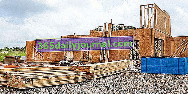 Lesena hiša: načelo gradnje, prednosti in slabosti