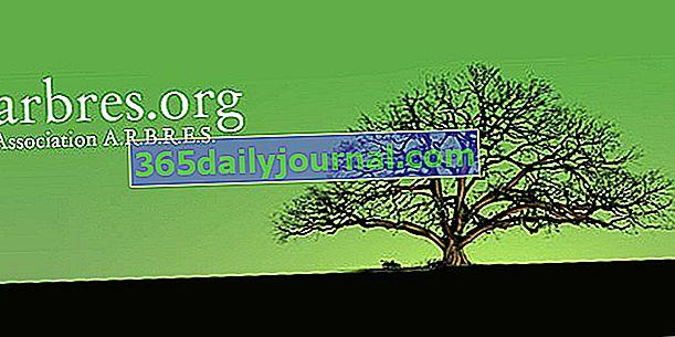 Niezwykłe drzewa: Stowarzyszenie ARBRES
