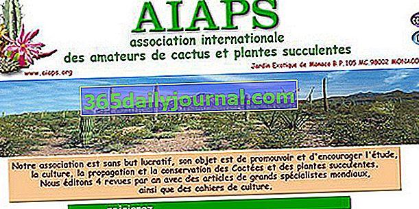 Kaktusy a sukulenty - AIAPS