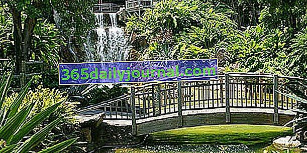 Ogród Botaniczny Deshaies (Gwadelupa)